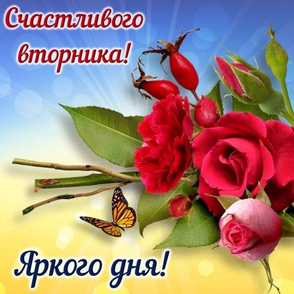 Хорошего вторника открытки и картинки019