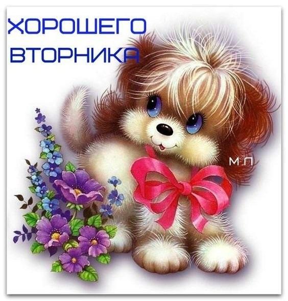 Хорошего вторника открытки и картинки021