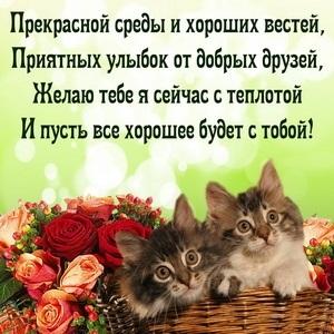 Хорошего дня в среду картинки и открытки015