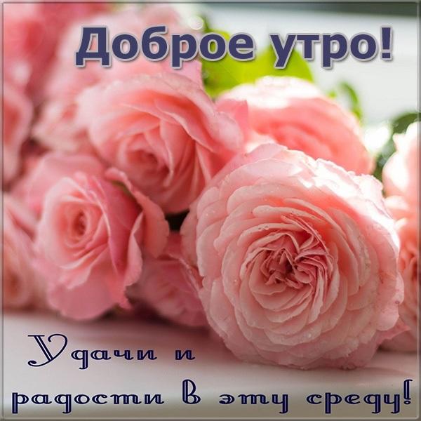 Хорошего дня в среду картинки и открытки018