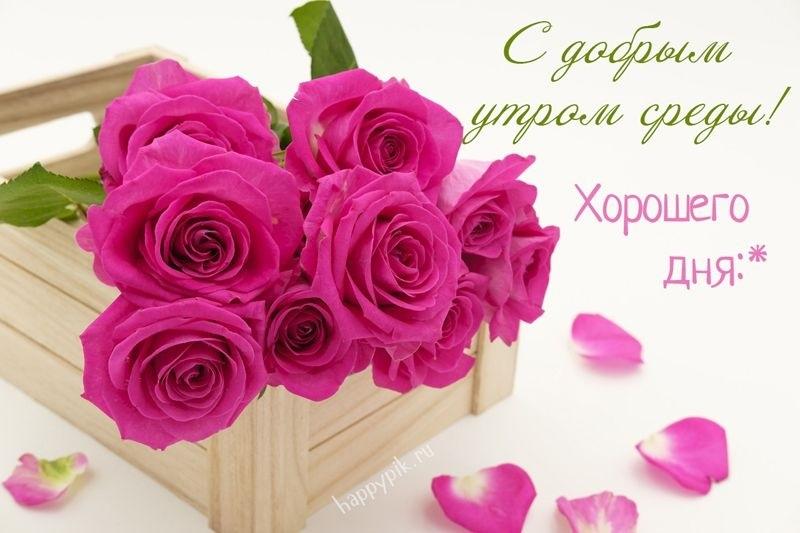 Хорошего дня в среду картинки и открытки019