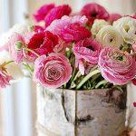 Цветы картинки на день учителя — подборка