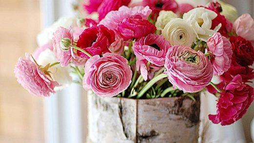 Цветы картинки на день учителя008