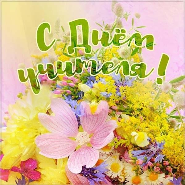 Цветы картинки на день учителя017