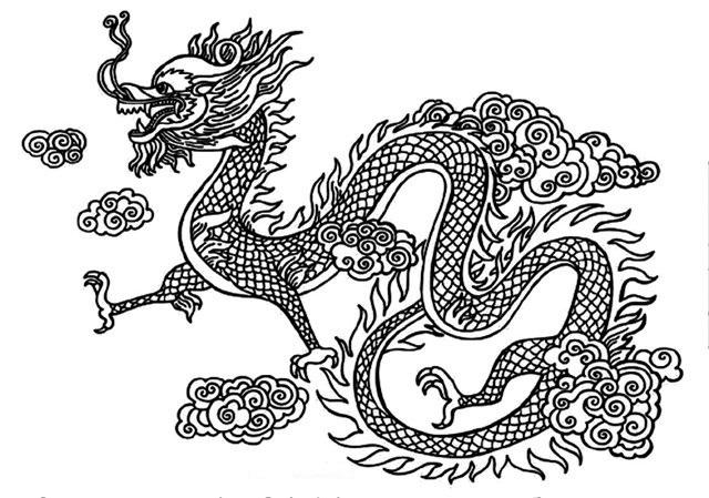 Эскиз дракон с цветами - подборка фото003