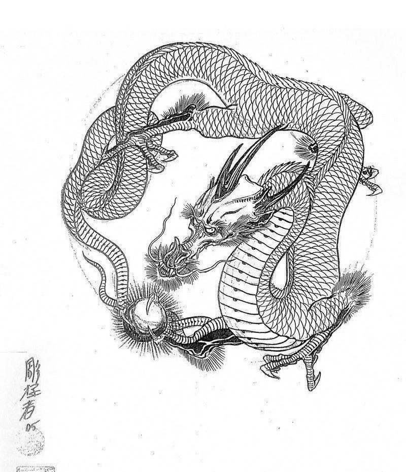Эскиз дракон с цветами - подборка фото018