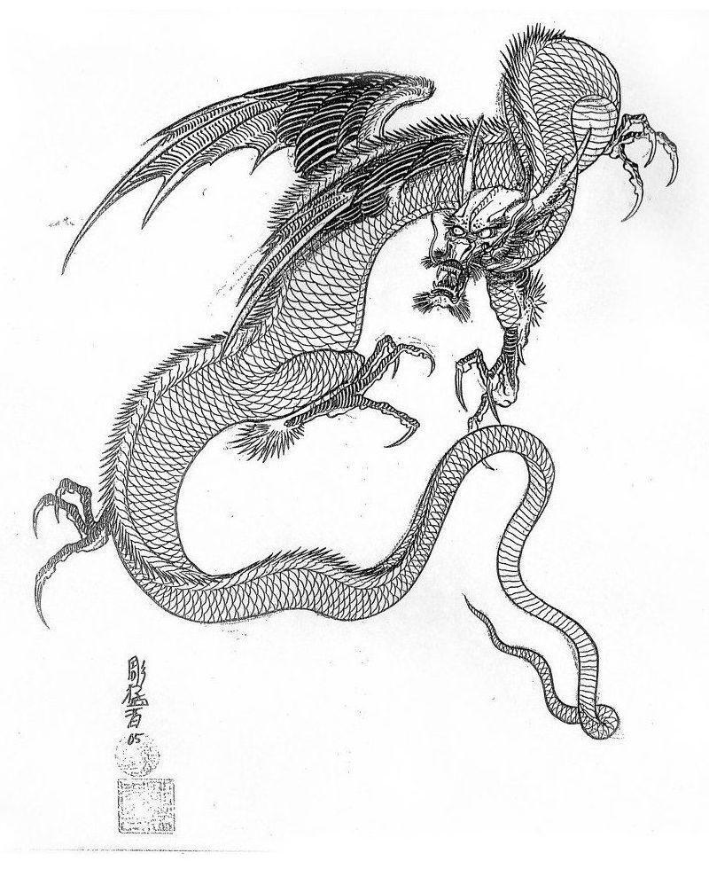 Эскиз дракон с цветами - подборка фото022