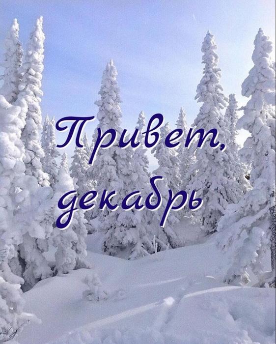 А вот и зима пришла картинки (23)