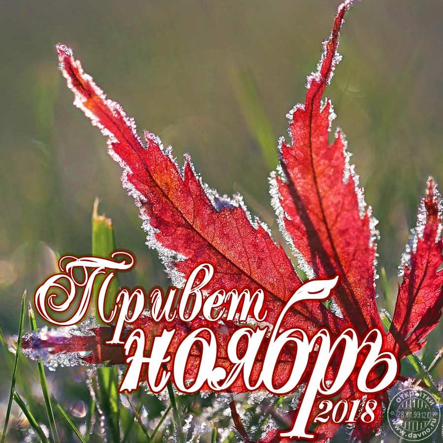 Привет ноябрь - открытка с 1 ноября