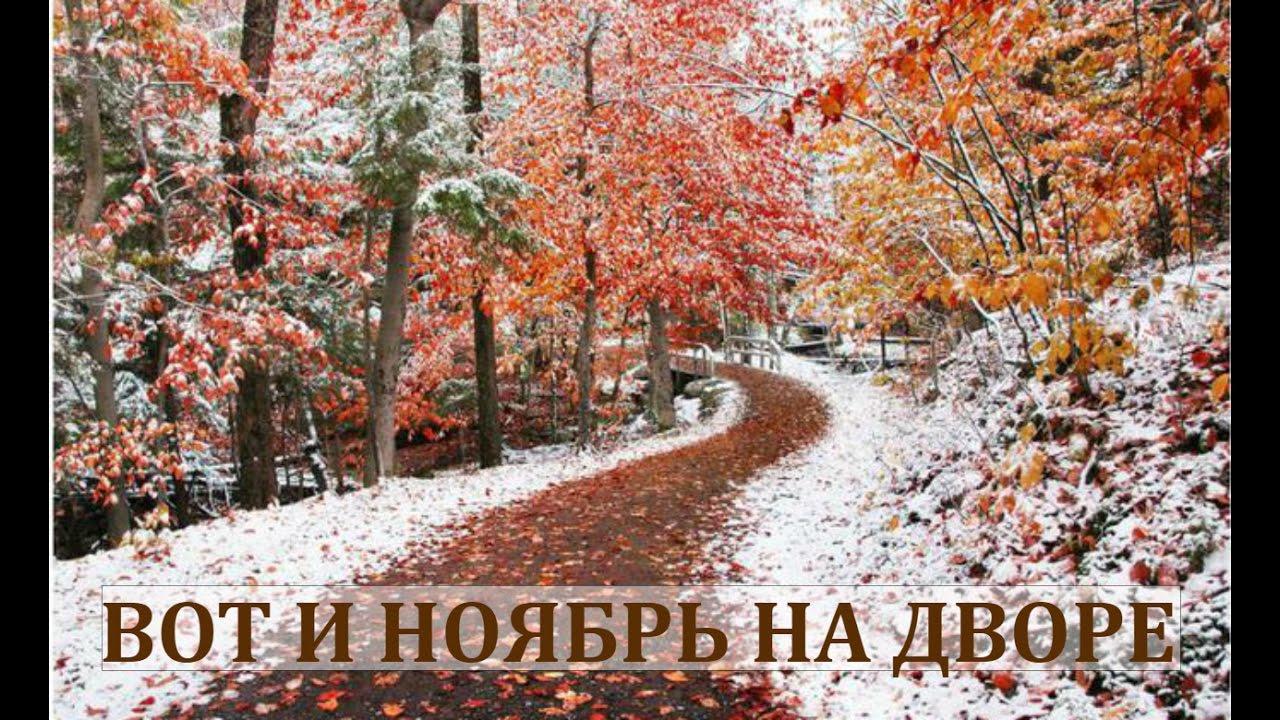 А вот и ноябрь картинки (6)