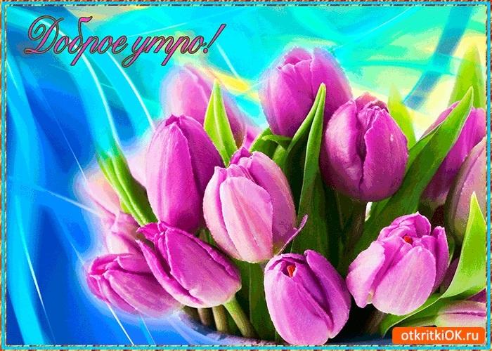 Весенние открытки с добрым утром019