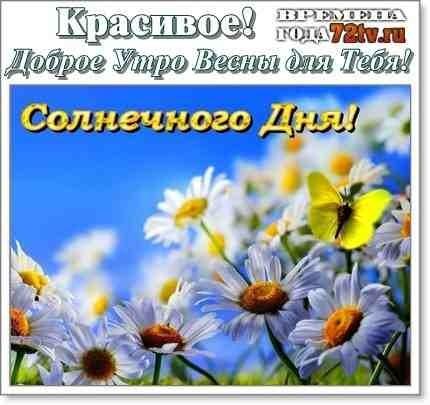 Весенние открытки с пожеланием доброго утра004