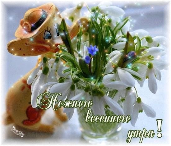 Весенние открытки с пожеланием доброго утра005