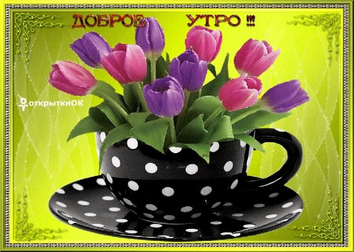Весенние открытки с пожеланием доброго утра008