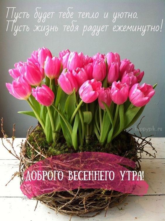 Весенние открытки с пожеланием доброго утра011