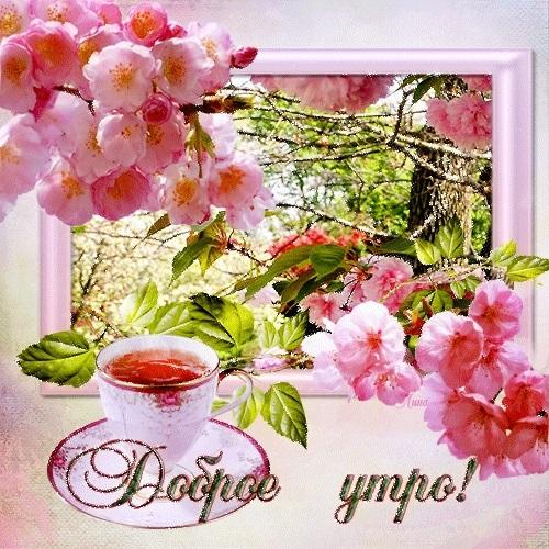 Весенние открытки с пожеланием доброго утра019