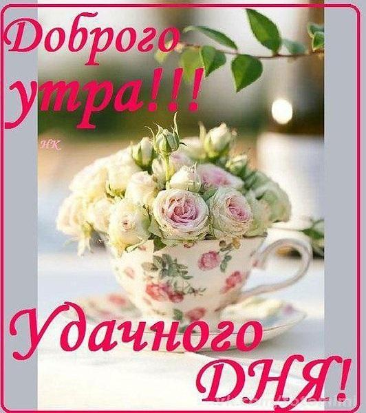 Доброе утро добрый день012