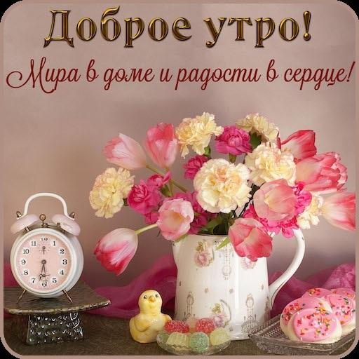 Доброе утро и день007