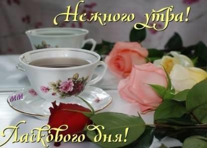 Доброе утро и день009