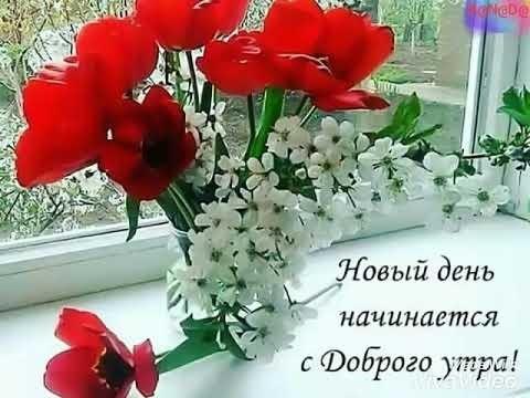 Доброе утро и день011
