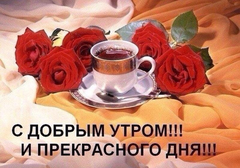 Доброе утро картинки красивые с надписью001