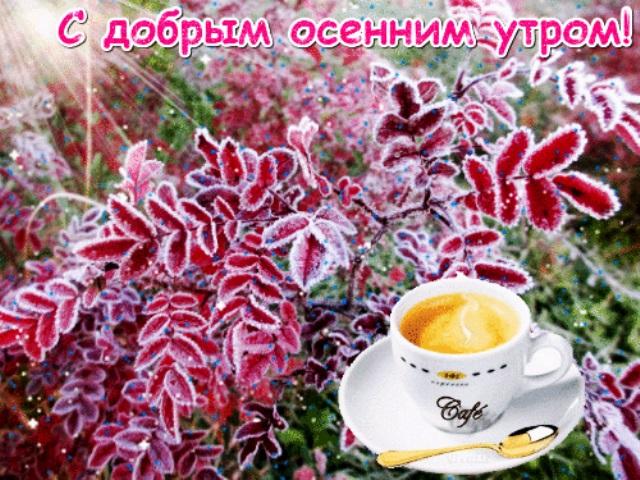 Доброе утро осеннее фото (3)