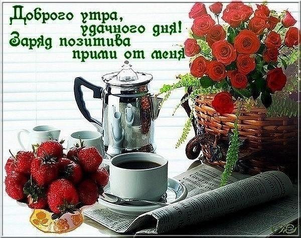 Доброе утро, хорошего дня014