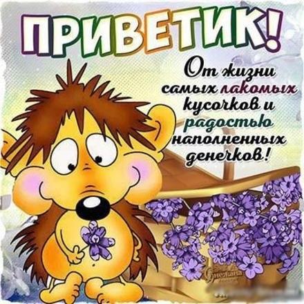 Доброе утро  Привет  Прикольные картинки001