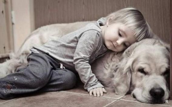 Картинки на Всемирный день домашних животных (5)