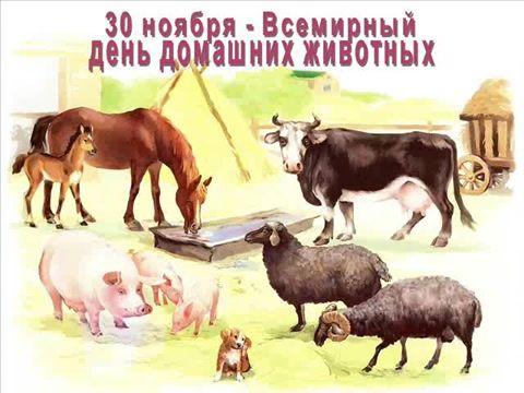 Картинки на Всемирный день домашних животных (7)