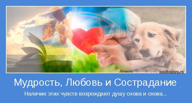 Картинки на праздник Всемирный день сострадания (20)