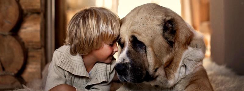 Картинки на праздник Всемирный день сострадания (8)
