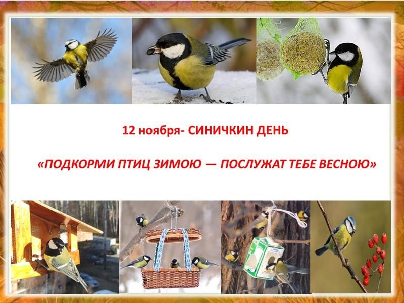 Картинки на праздник Синичкин день (1)