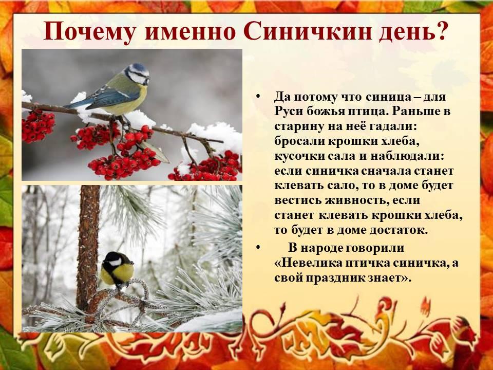 Картинки на праздник Синичкин день (2)