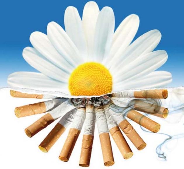 Картинки на праздник день отказа от курения (28)