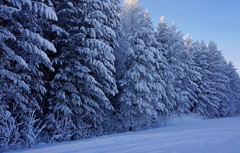 Картинки на рабочий стол зимы красивые (17)