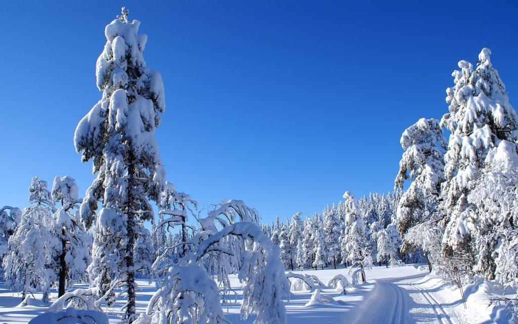 Картинки на рабочий стол зимы красивые (6)