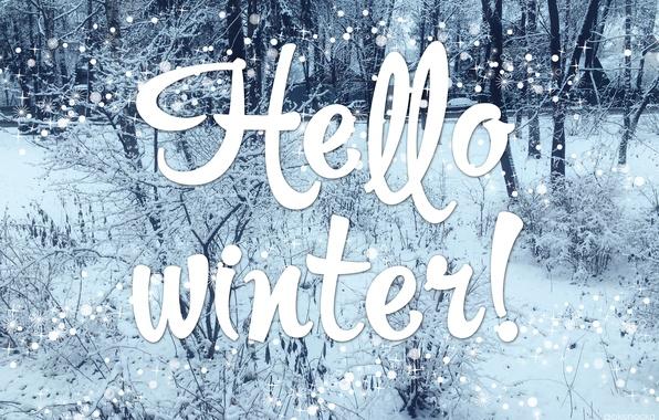 Картинки привет зима прикольные (2)