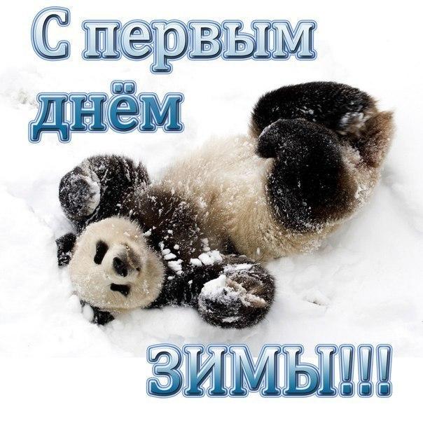 Картинки прикольные с первым днем зимы (1)