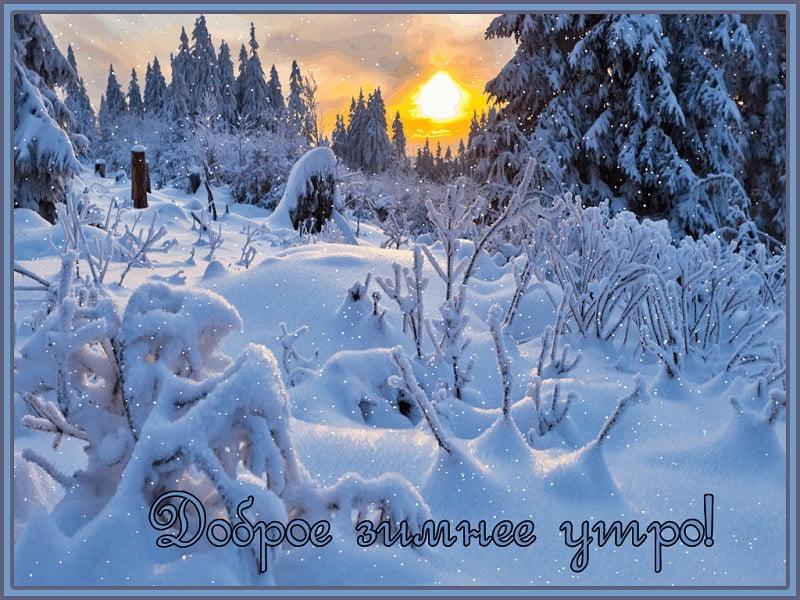 Картинки с добрым утром и зимним утром (15)