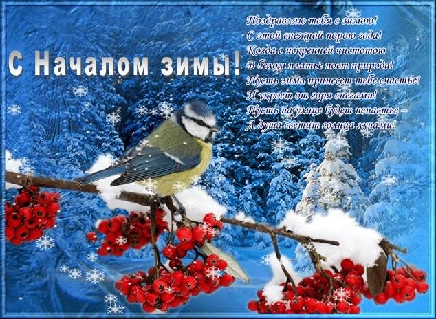 Картинки с началом зимы прикольные (1)