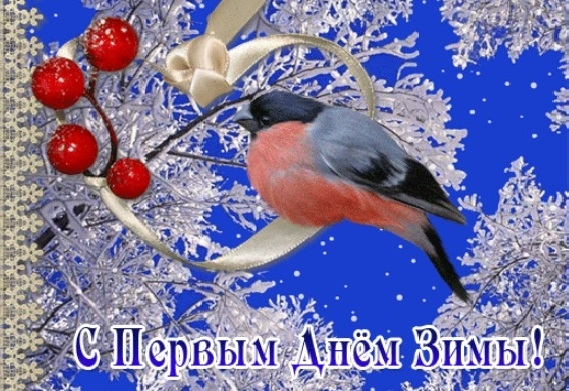 Картинки с началом зимы прикольные (6)