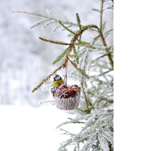 Красивые картинки зимы на заставку телефона (14)