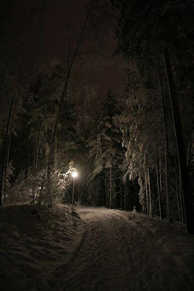 Красивые картинки зимы на заставку телефона (17)