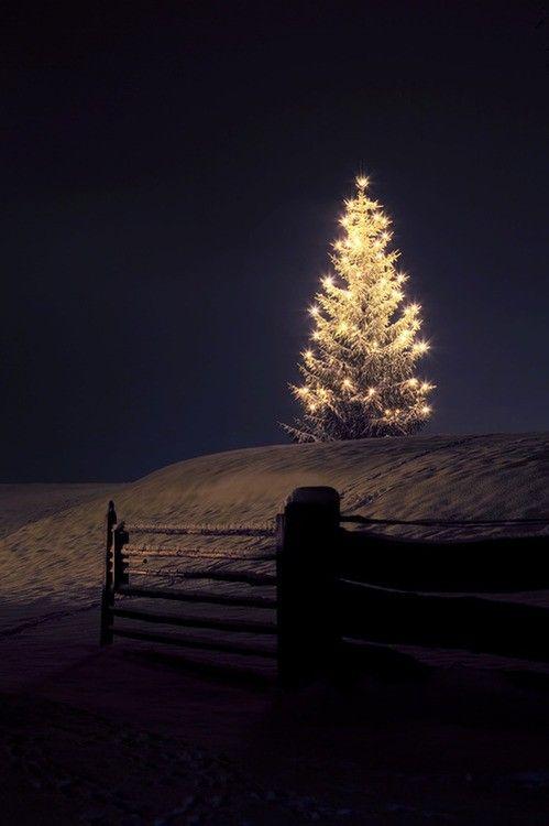 Красивые картинки зимы на заставку телефона (20)