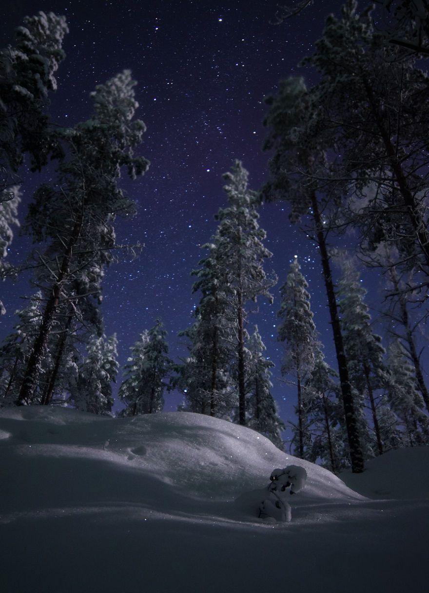 Красивые картинки зимы на заставку телефона (25)