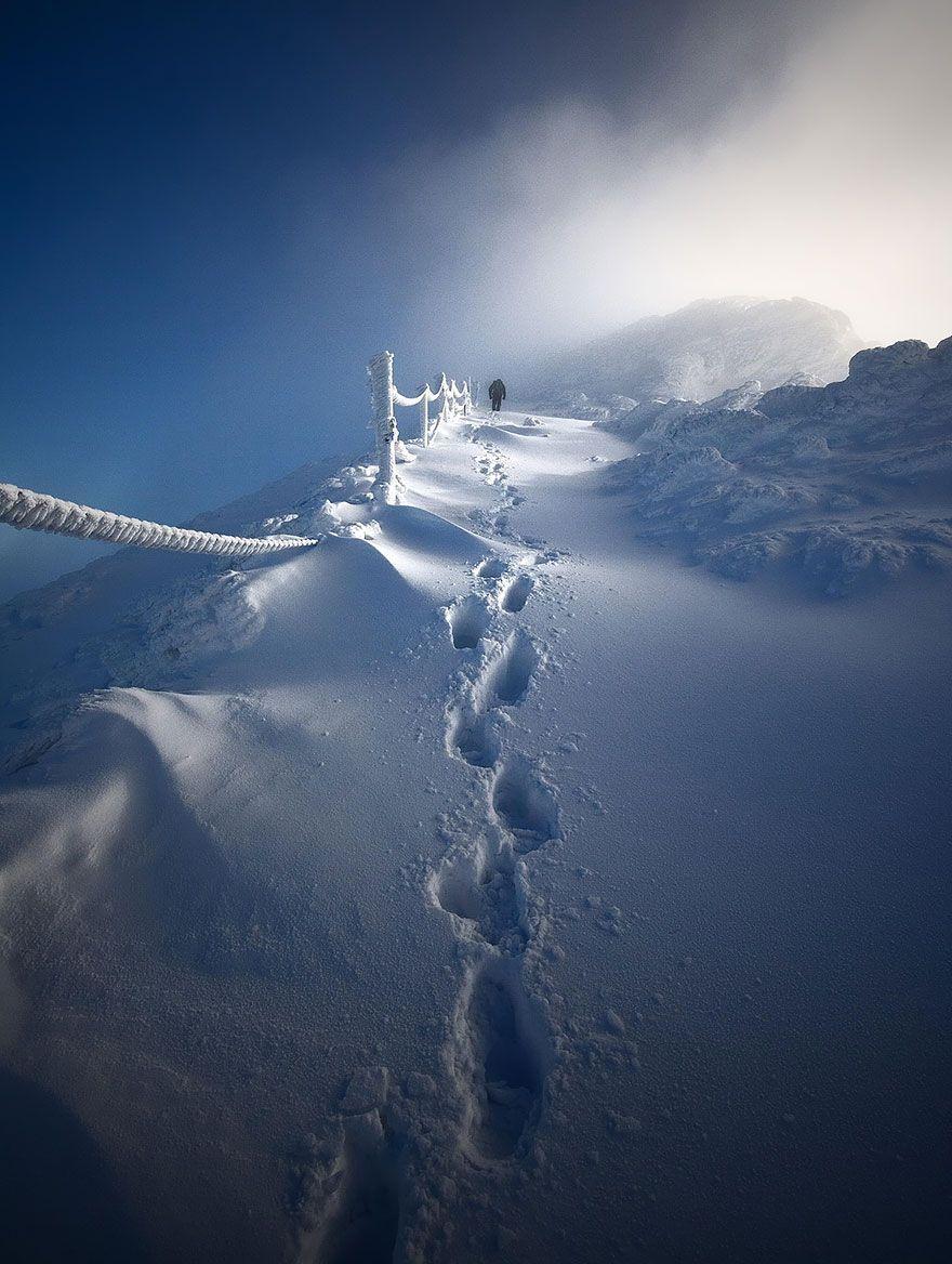 Красивые картинки зимы на заставку телефона (26)
