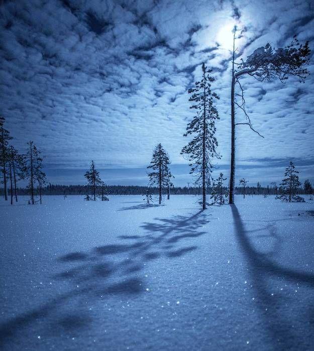 Красивые картинки зимы на заставку телефона (3)