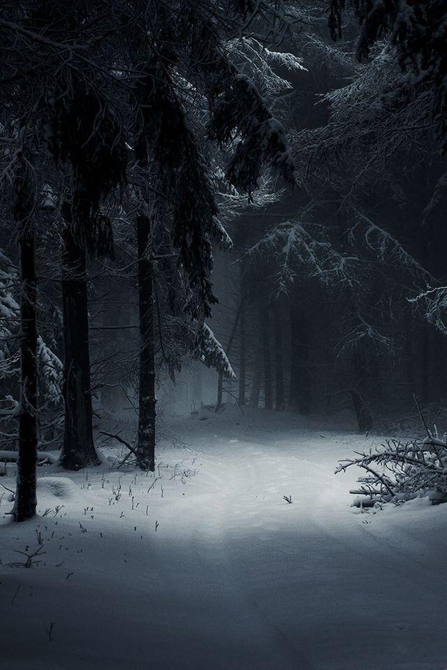 Красивые картинки зимы на заставку телефона (31)