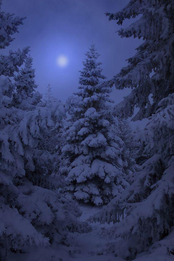 Красивые картинки зимы на заставку телефона (7)